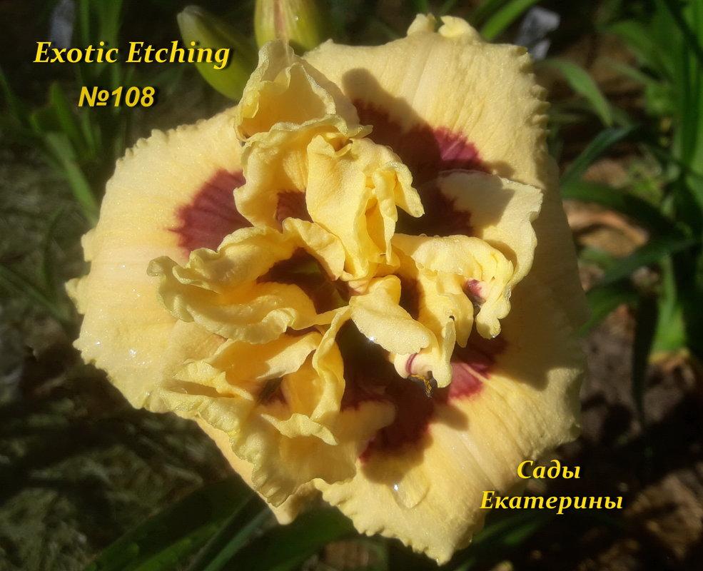 №108   Еxotic Еtching  (  Экзотик Этчин)