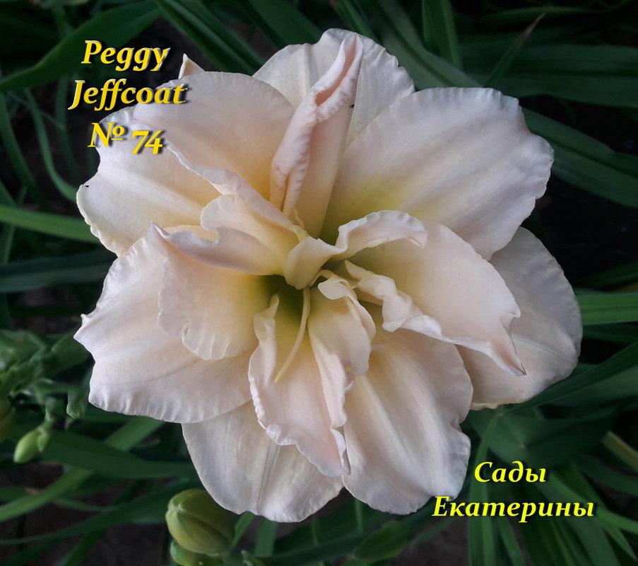 №74    Peggy Jeffcoat (  Пегги Джефкоат  )