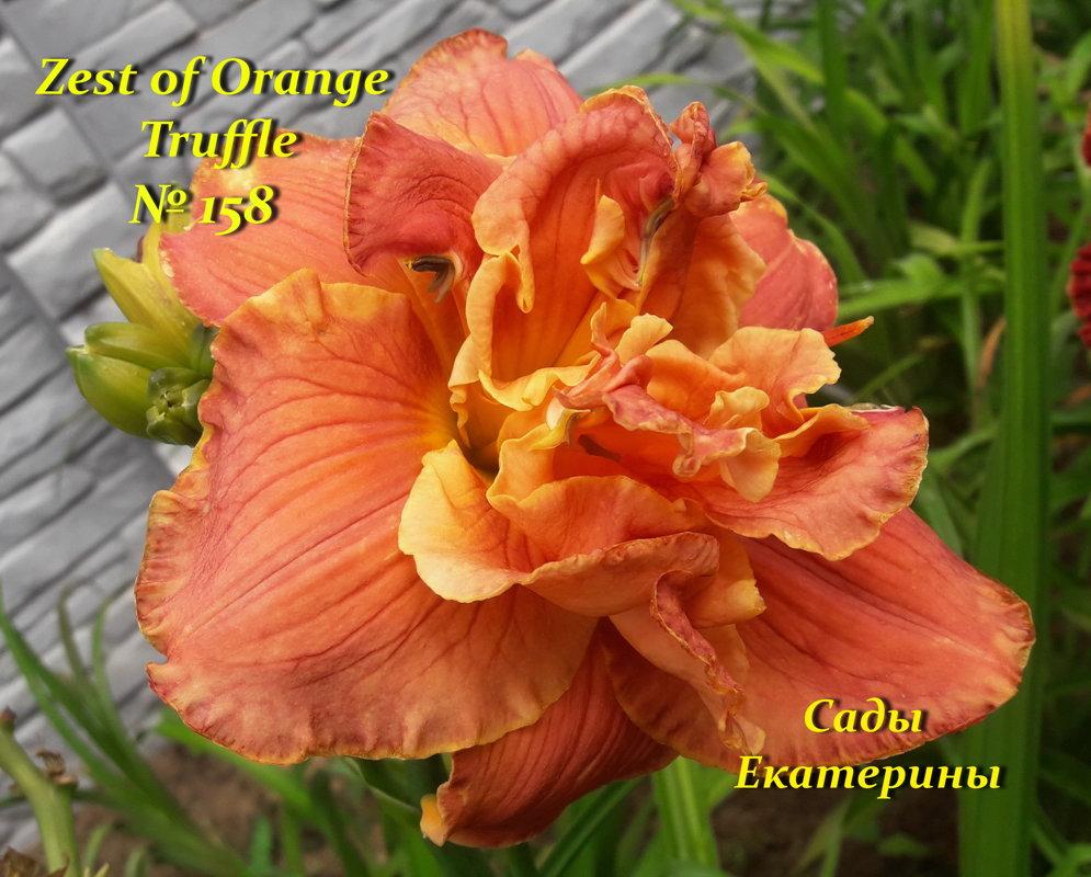 №158 Zest of Orange Truffle
