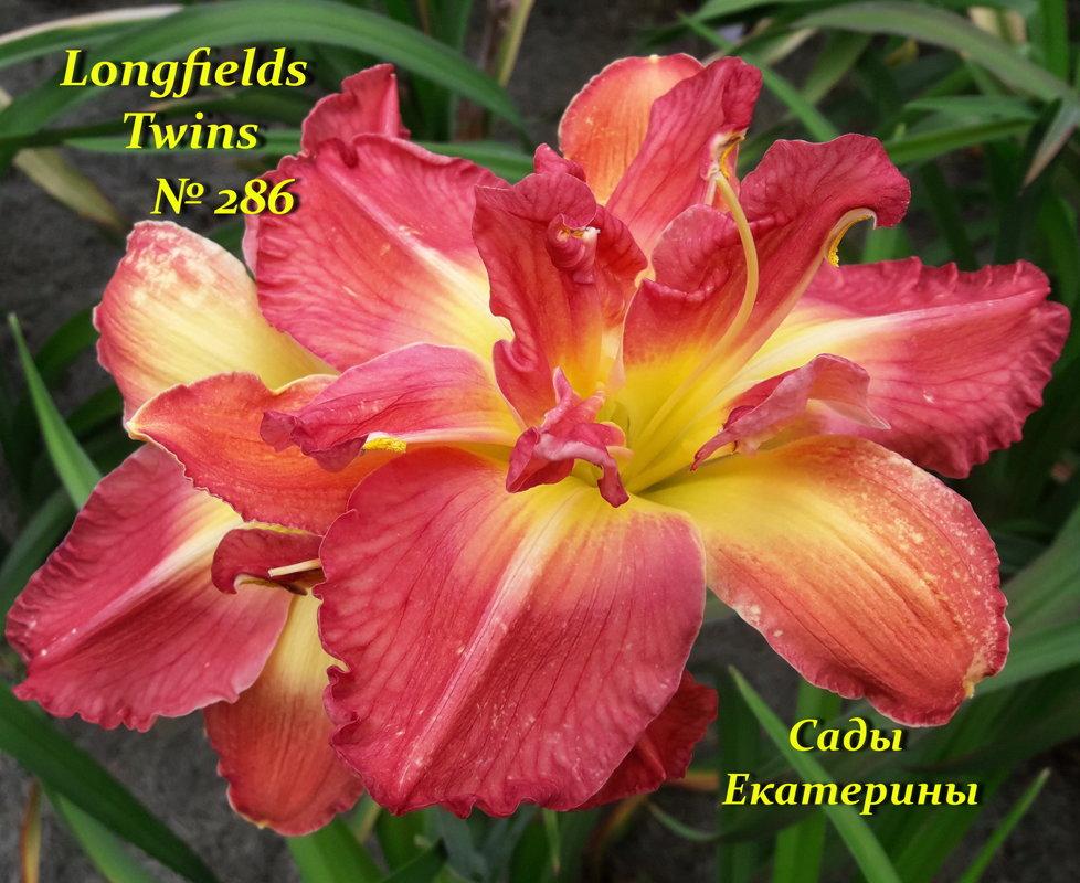 № 286 Longfields Twins