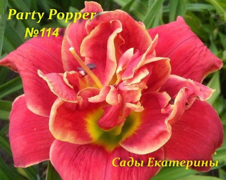 №114  Party Popper   ( Пати Поппер)
