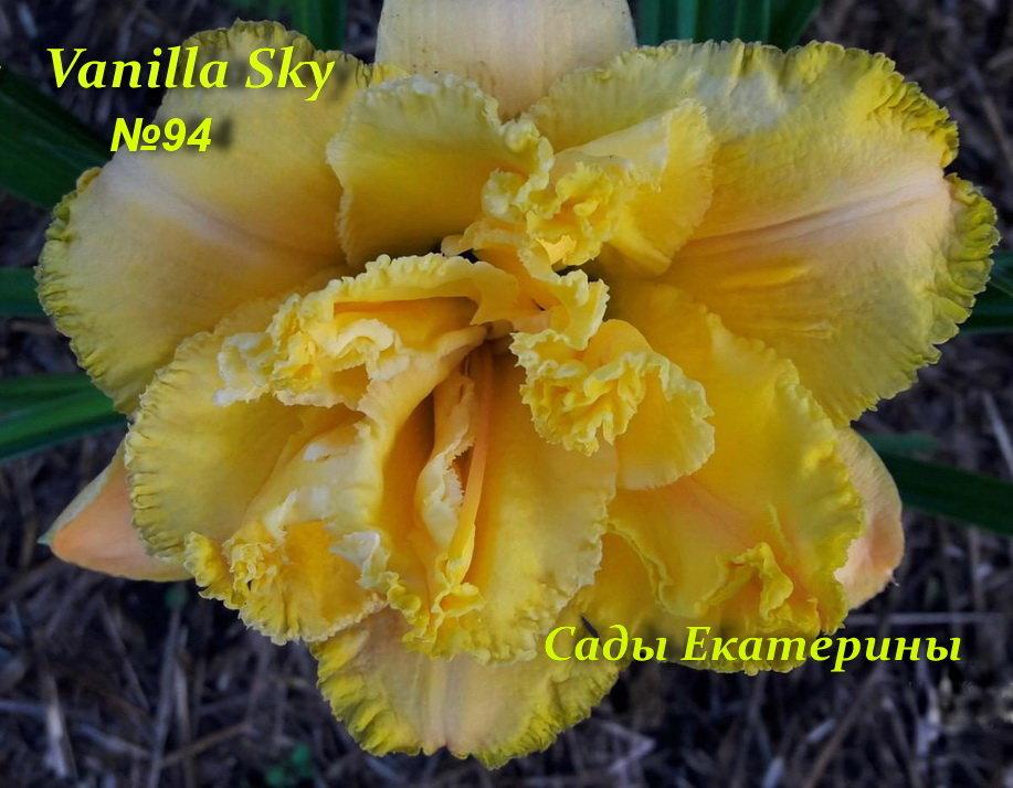№94 Vanilla Sky