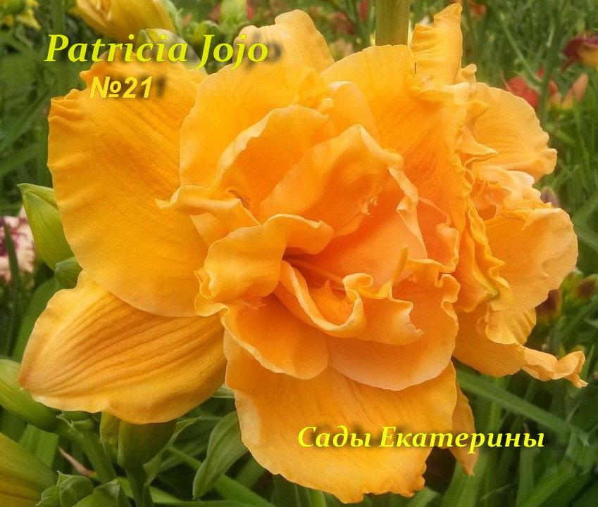 №21 Patricia Jojo ( Патрисия  )