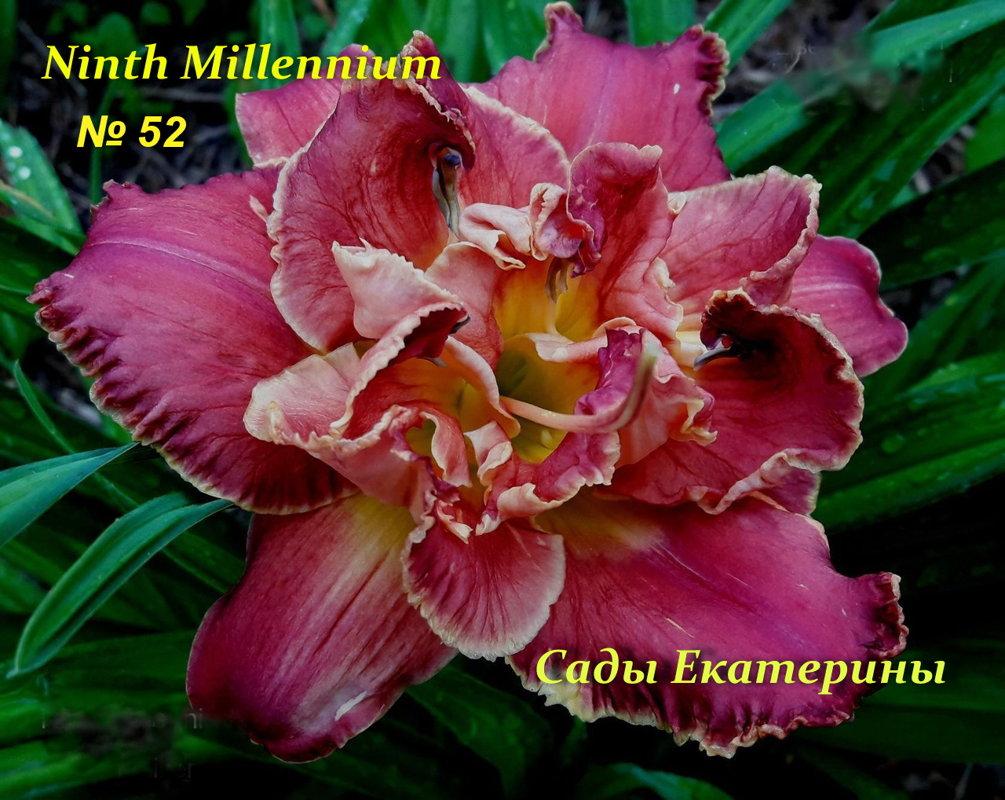 №52 NINTH MILLENNIUM