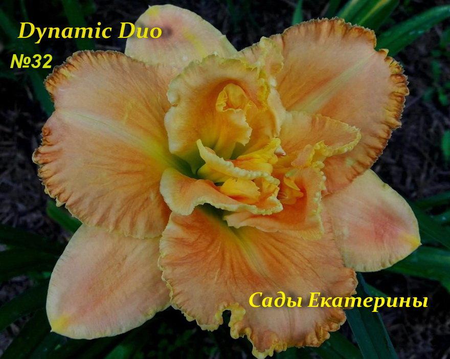 №32 Dynamic Duo ( Динамик Дуо)