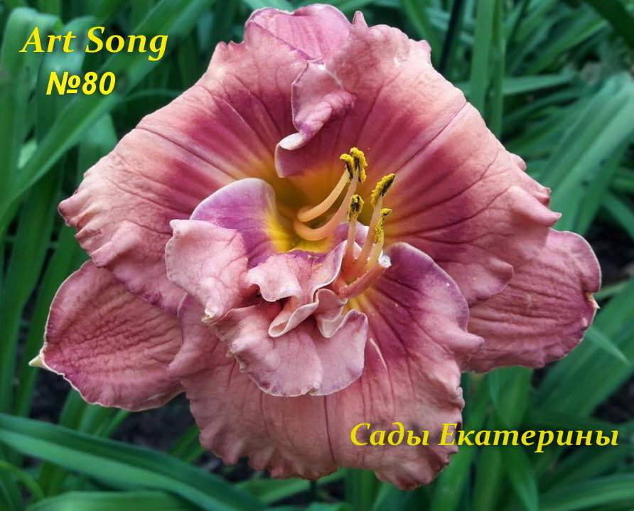 № 80  Art Song   ( Арт Сонг)