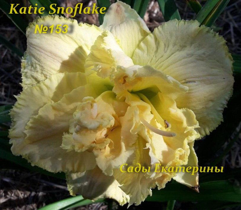№153  Katie Snoflake