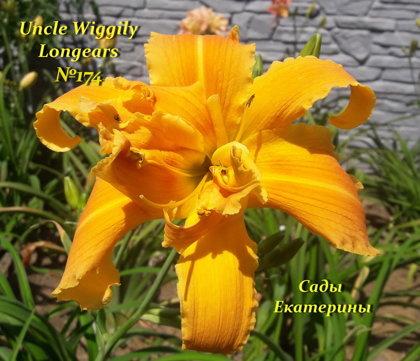 №174 Uncle Wiggily Longears