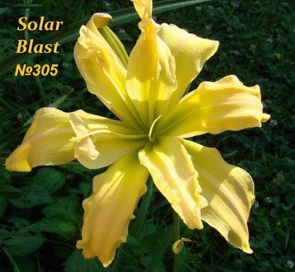 №305 Solar Blast