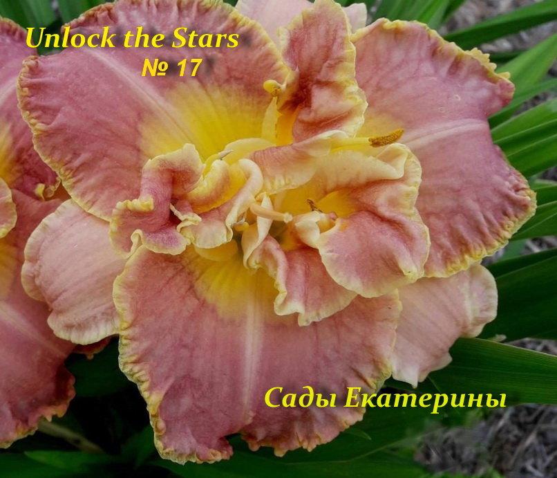 №17  Unlock the Stars  ( Анлок зе Старз)
