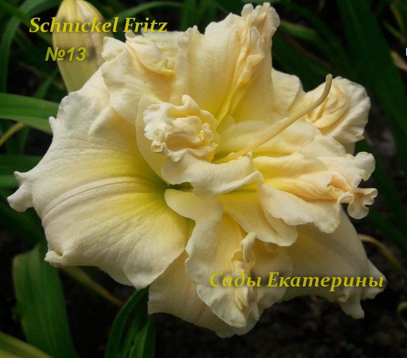№13  Schnickel Fritz (Шникель Фриц)